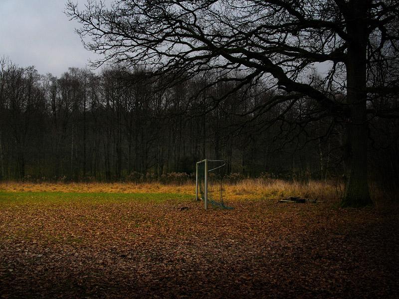 Fotbollsmål i mitten av skogen.