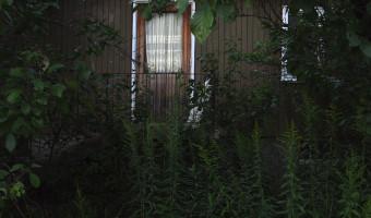 Överväxt hus i Ronneby