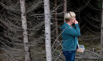 Susanne plockar svamp i skogen
