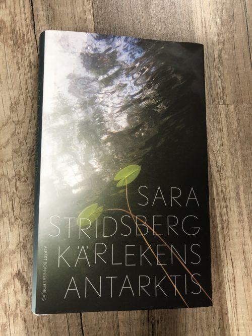 Bokomslag för Kärlekens Antarktis med vatten och blommor